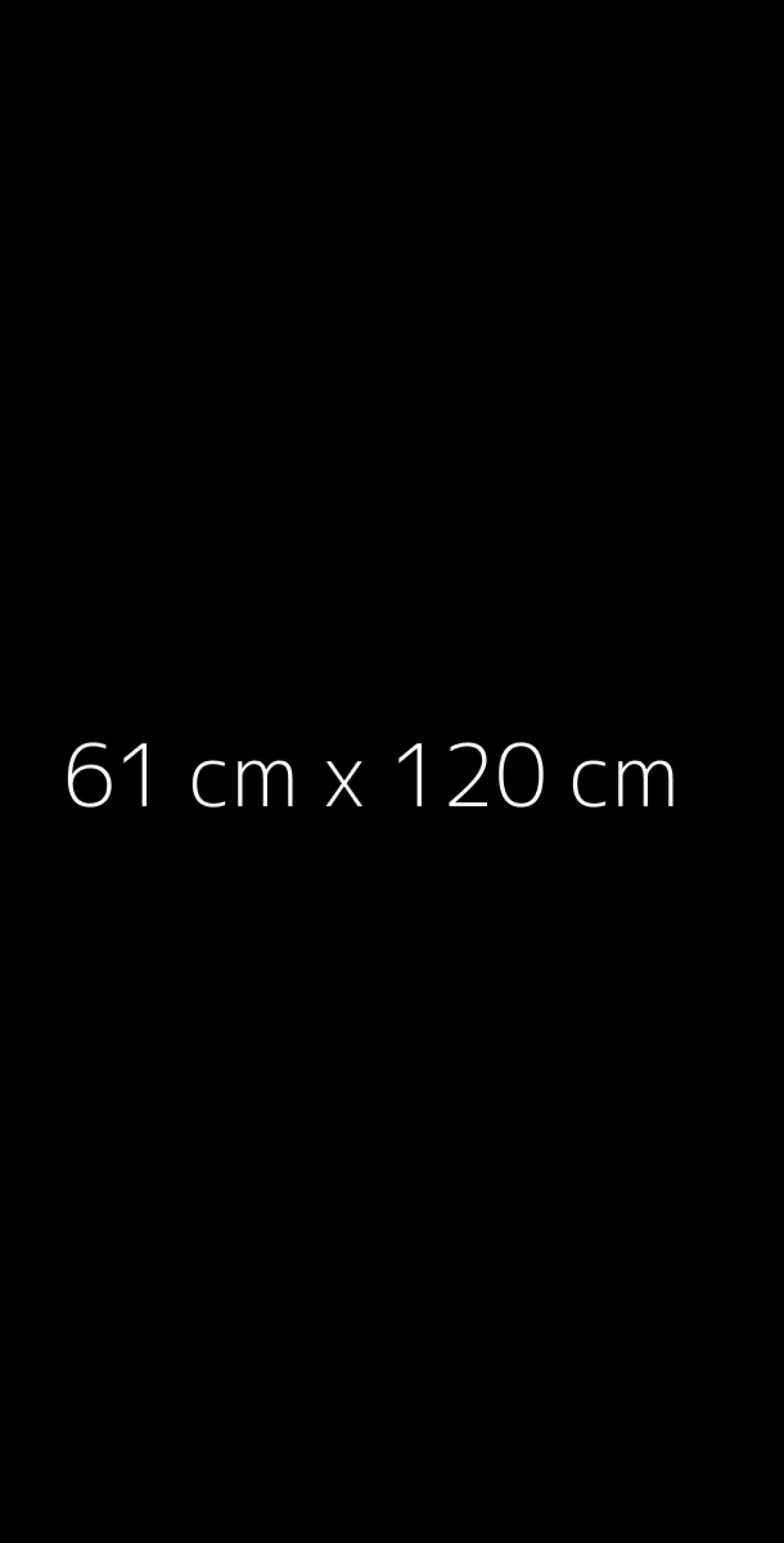 Reprodukcje format 61x120