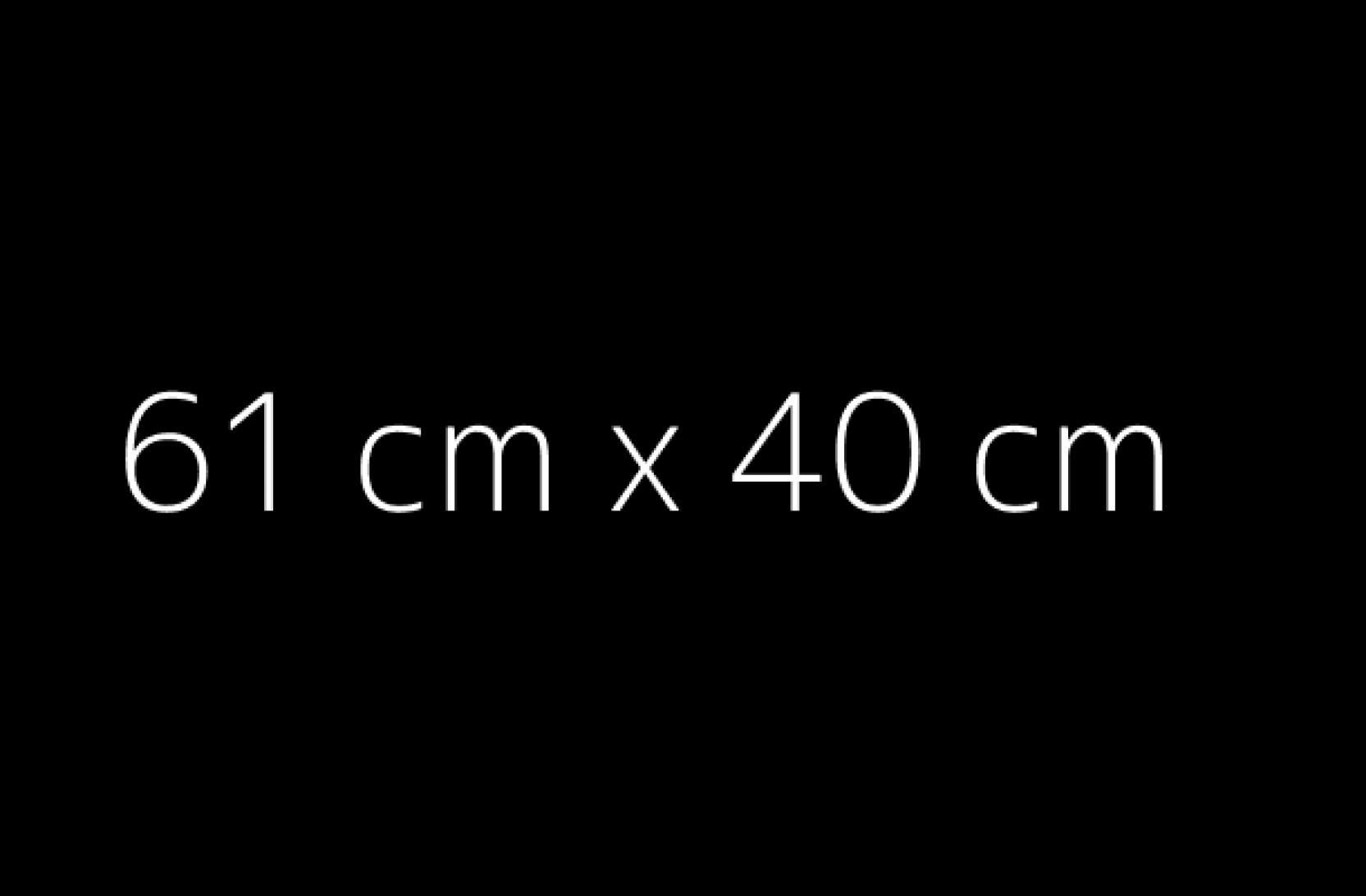 Reprodukcje format 61x 40