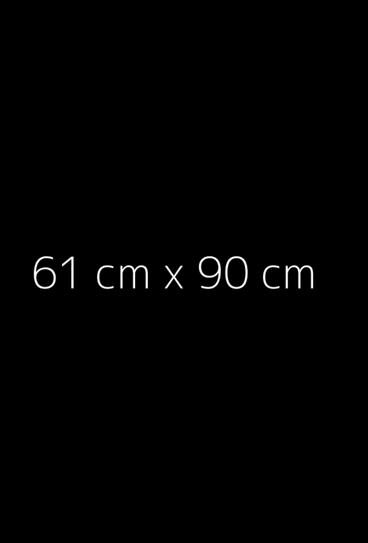 Reprodukcje format 61x90